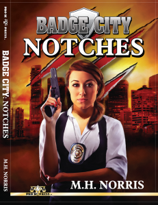 Notches Cover